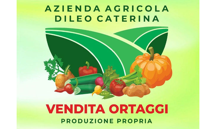Azienda Agricola Dileo Caterina: chi siamo